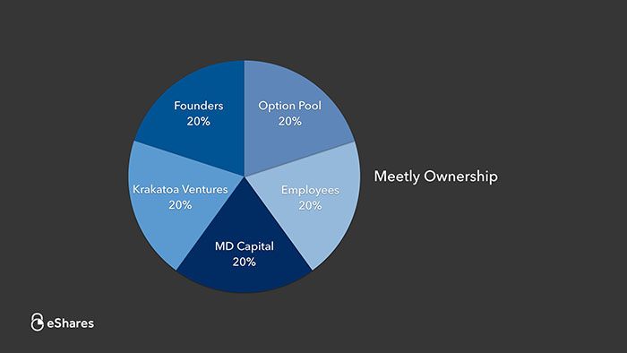 The Ownership Graph: Introduction 1