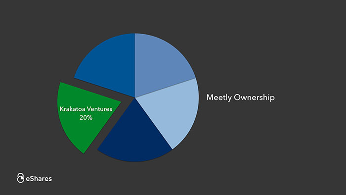 The Ownership Graph: Introduction 2